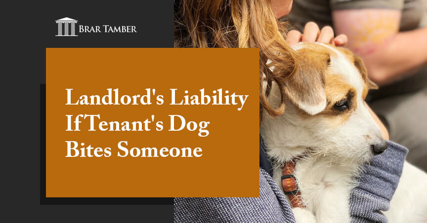 Landlord's Liability If Tenant's Dog Bites Someone